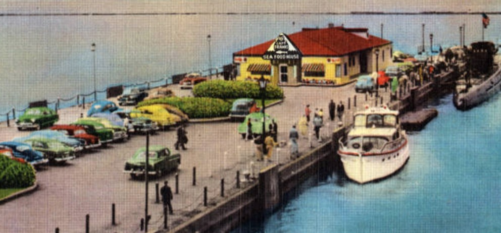 Fish in the Fifties
