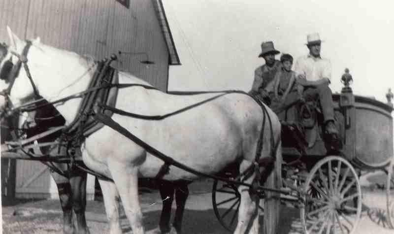 Searles Horse Team