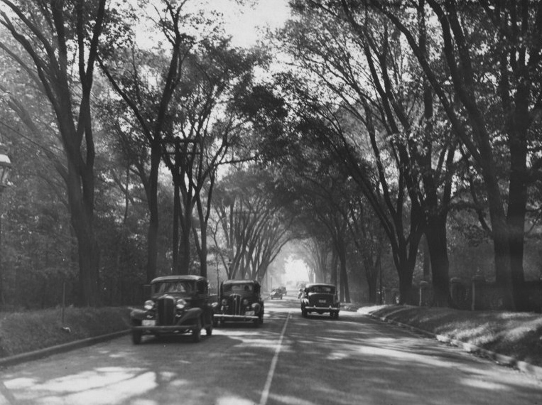 Lakeshore Boulevard, 1938