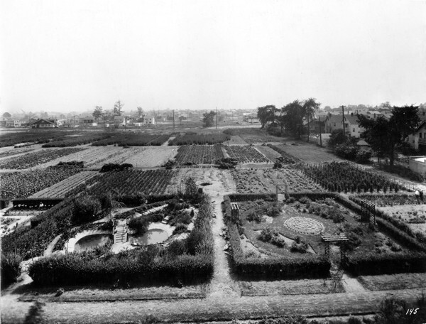 View From School, Aug. 1926