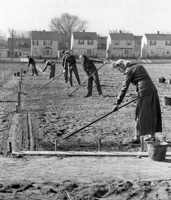 Raking, April 1943