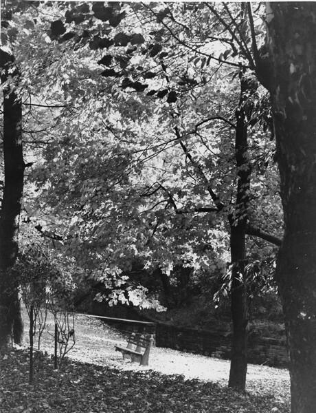 Finnish Cultural Garden, 1959