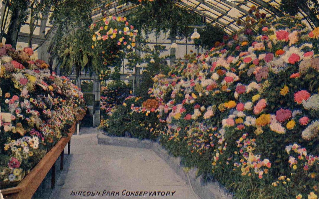 Conservatory, ca. 1910