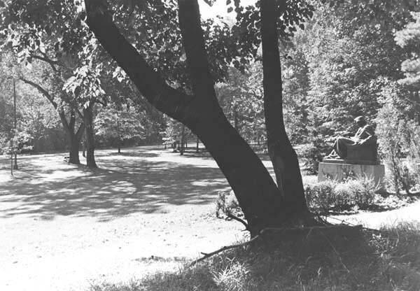 Romanian Garden, 1970