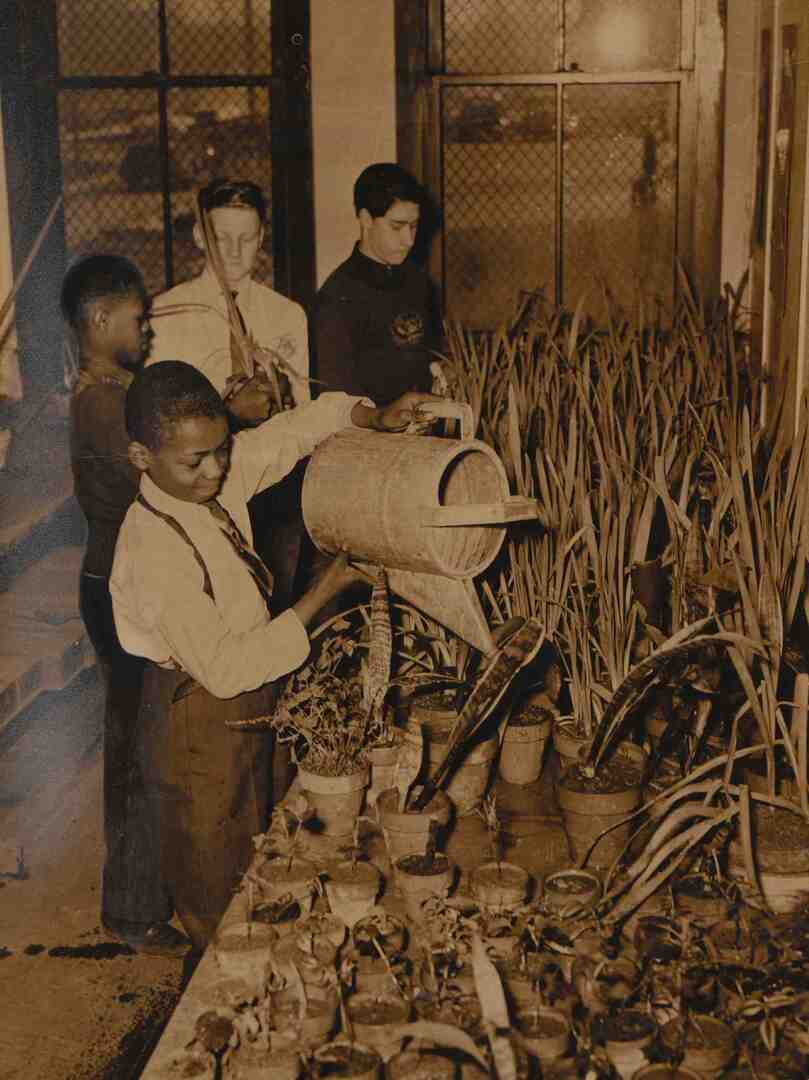 Gardening Program At Outhwaite, 1941