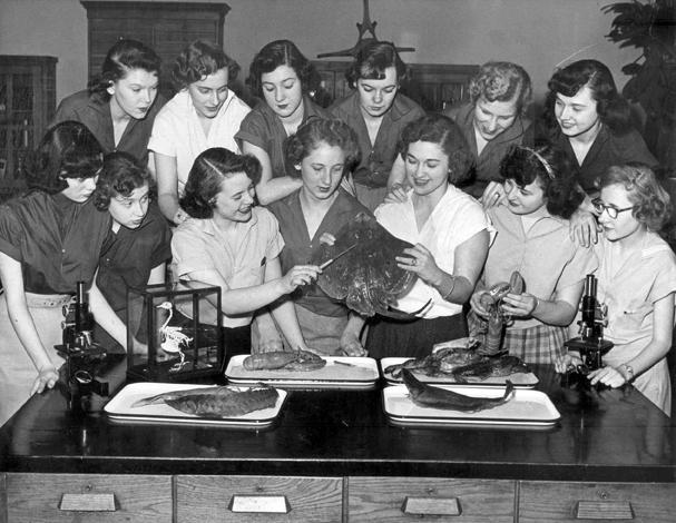 Biology Class, 1953