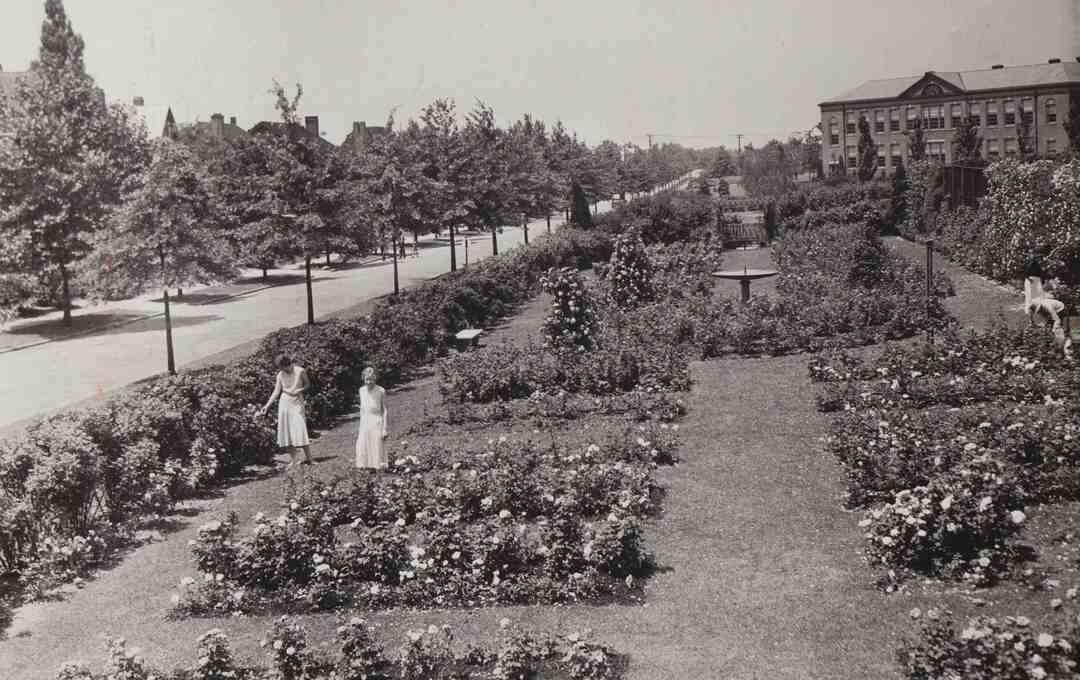 High School Garden, ca. 1920